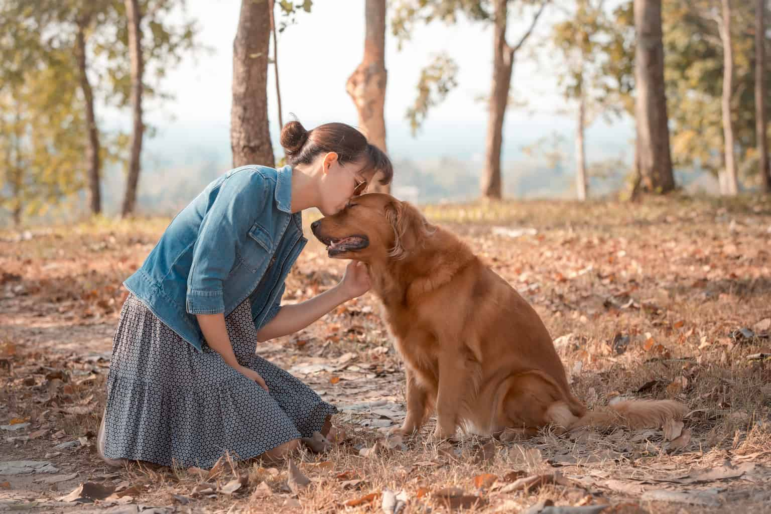 woman with golden retriever enjoying a quiet moment together in the woods