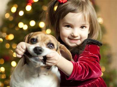 Child pulling on dogs lips, the dog is not having fun!