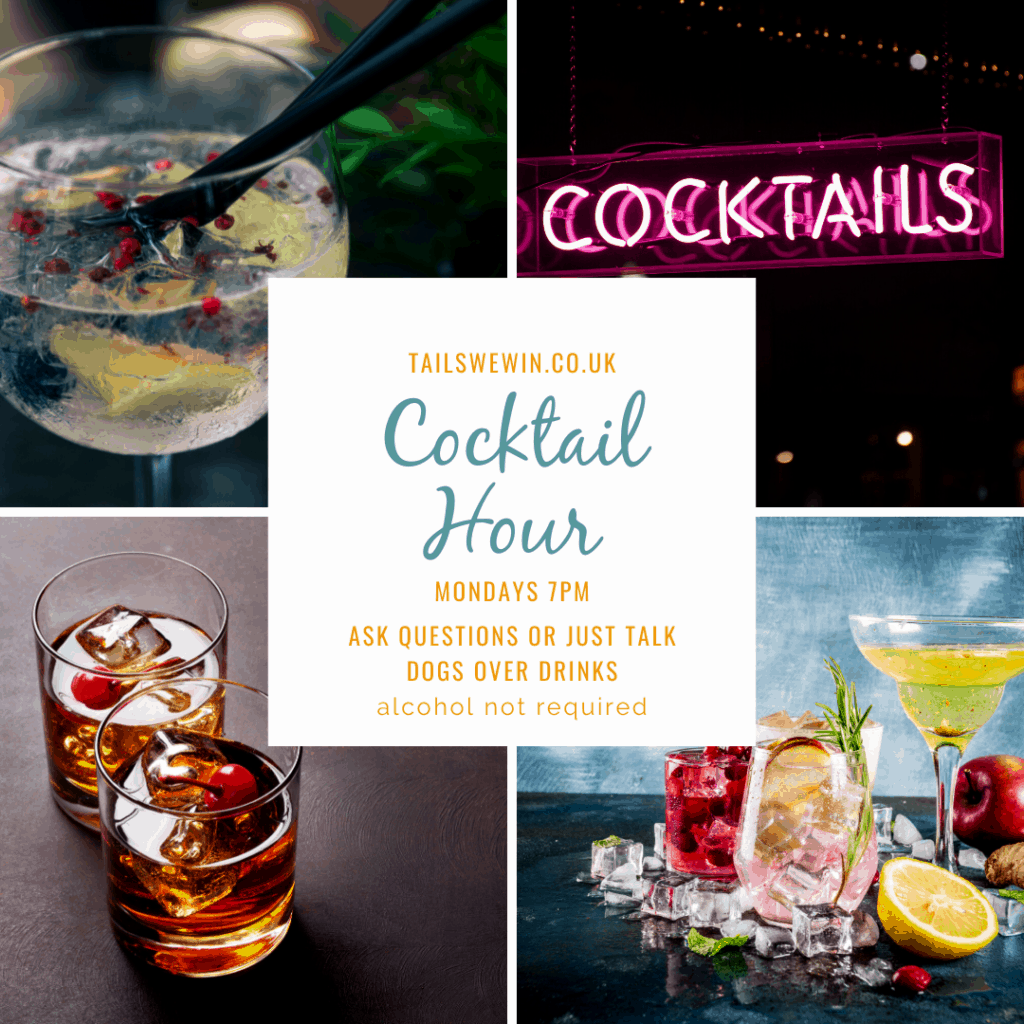 Different cocktails with text. Tails We Win Cocktail Hour, Mondays 7PM. Ask questions or just talk dogs over drinks. Alcohol not required